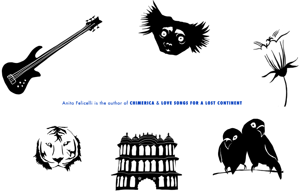 Anita Felicelli